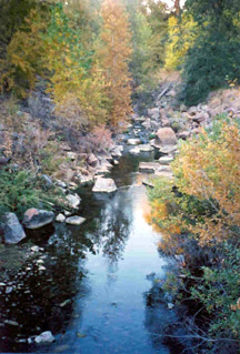 Lower Provo River and Hobble Creek Flow Recommendations