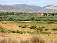 Salt Lake County Natural Areas Management Plan